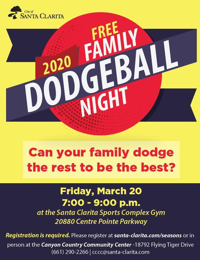 family dodgeball flyer