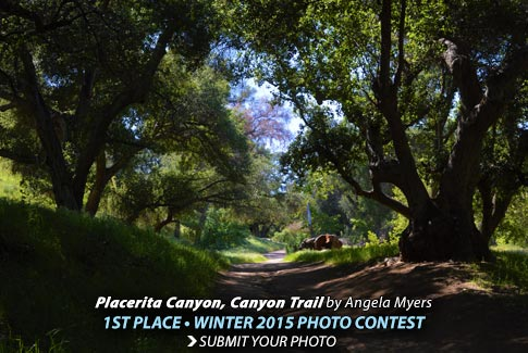 PhotoContest-Winter2015-1st