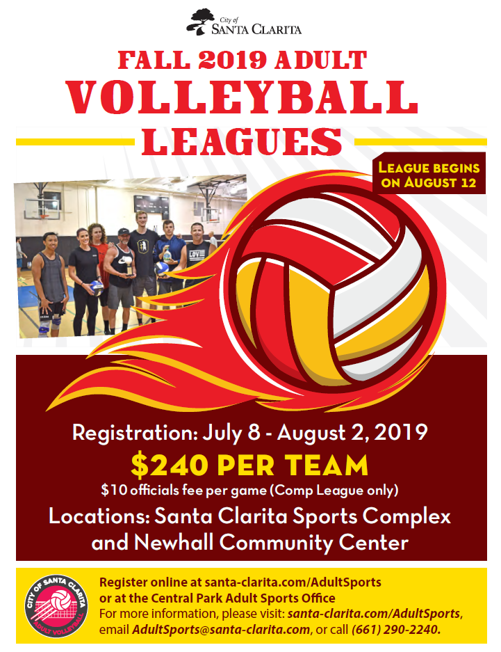 Adult Volleyball Flyer Fall 2019