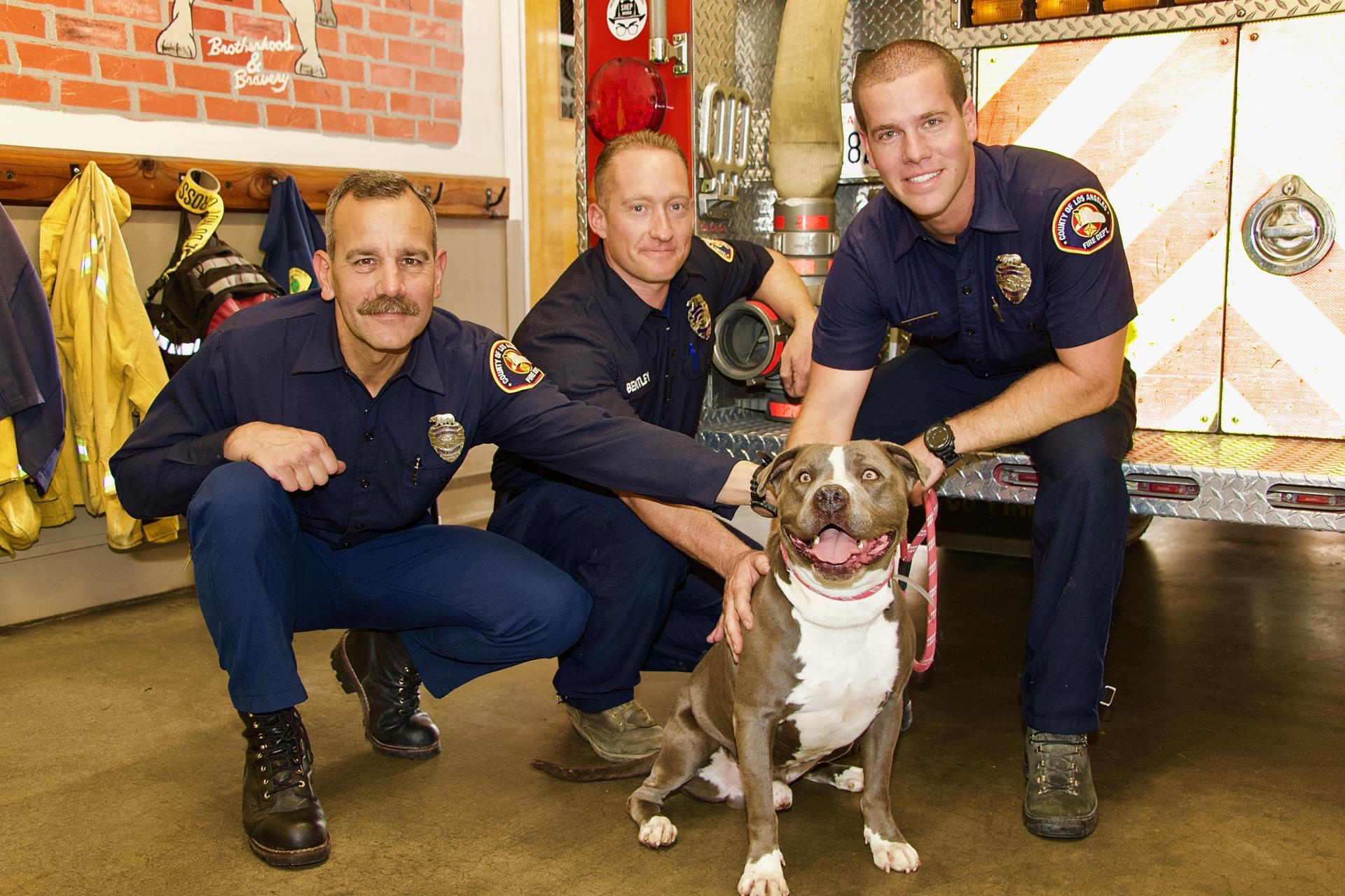 firefighters_puppies_2019_16